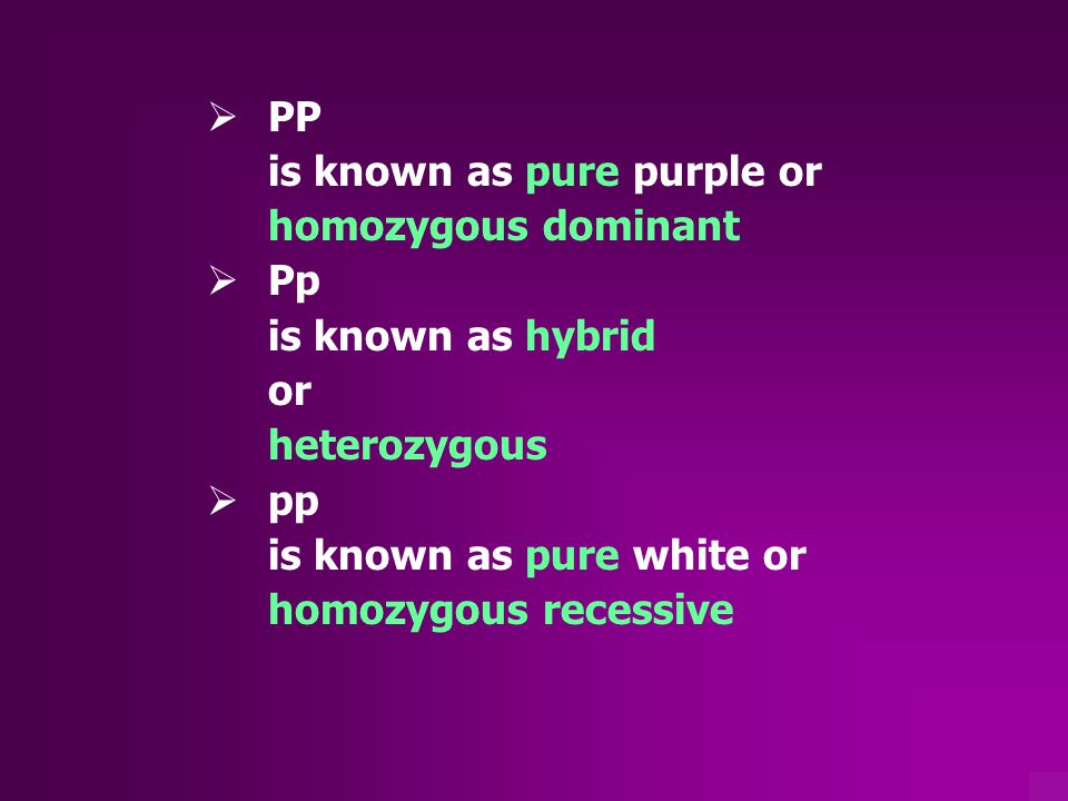 Pleiotropy  one allele having more than one effect (2 phenotypes)  example: white tiger also cross-eyed  Sickle-cell anemia Red blood cells sickle shape and hemoglobin defective