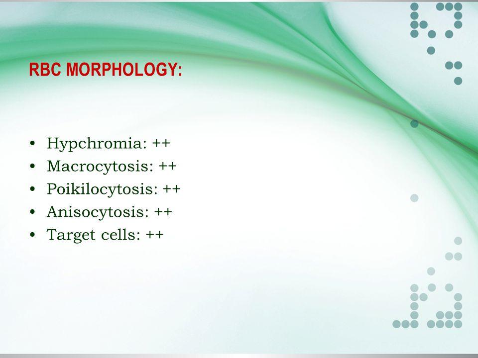 RBC MORPHOLOGY: Hypchromia: ++ Macrocytosis: ++ Poikilocytosis: ++ Anisocytosis: ++ Target cells: ++
