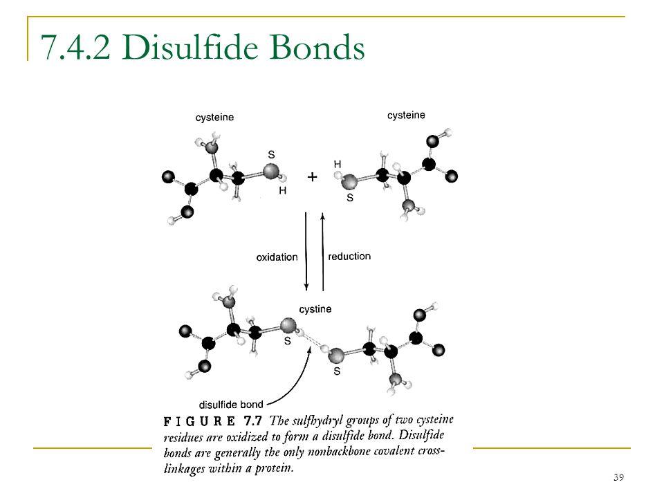 39 7.4.2 Disulfide Bonds