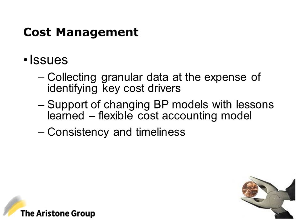 Cost Management Issues –Collecting granular data at the expense of identifying key cost drivers –Support of changing BP models with lessons learned –