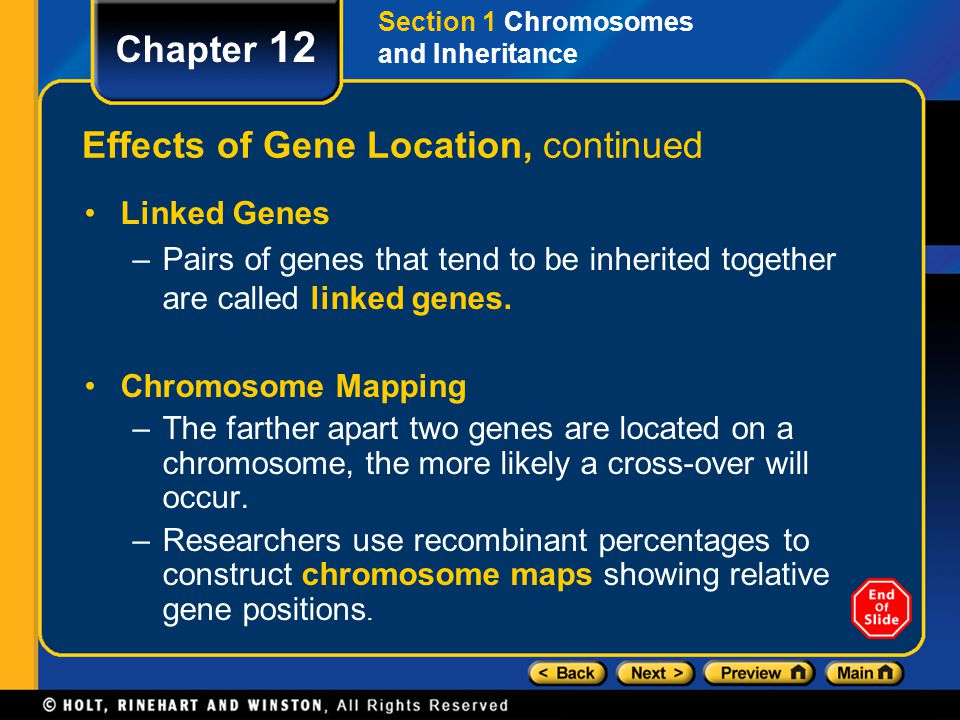 Chapter 12 Effects of Gene Location, continued Linked Genes –Pairs of genes that tend to be inherited together are called linked genes. Chromosome Map