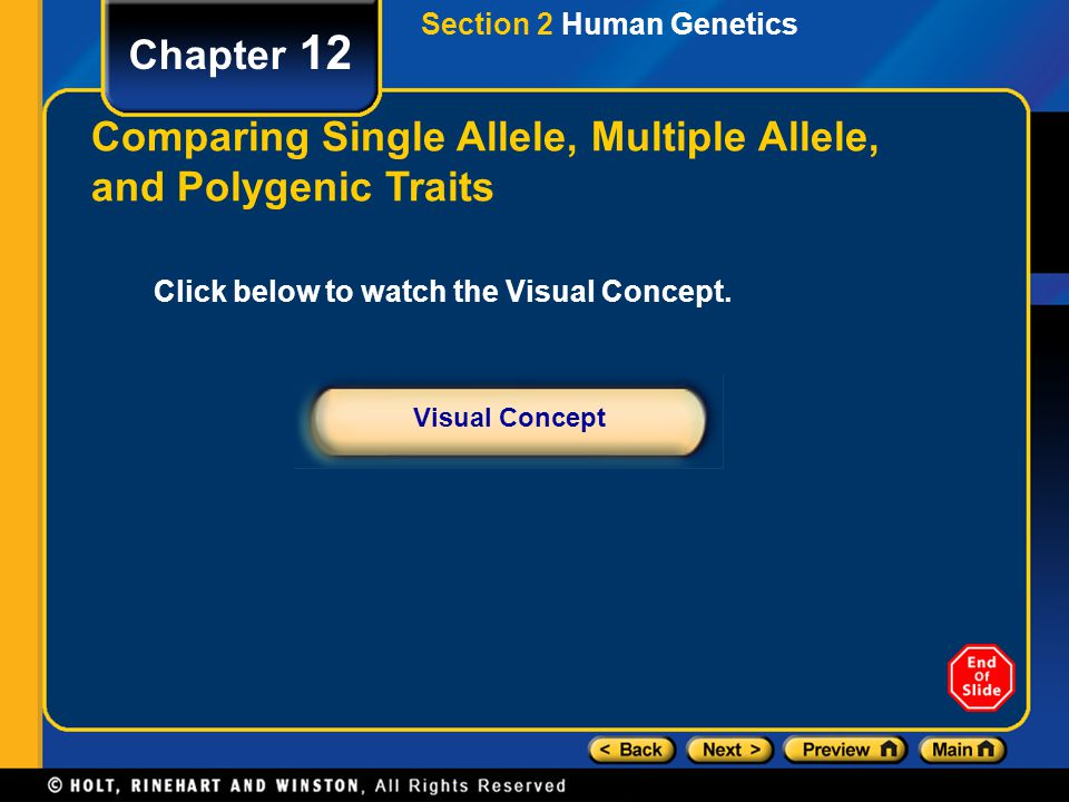 Chapter 12 Click below to watch the Visual Concept. Visual Concept Comparing Single Allele, Multiple Allele, and Polygenic Traits Section 2 Human Gene