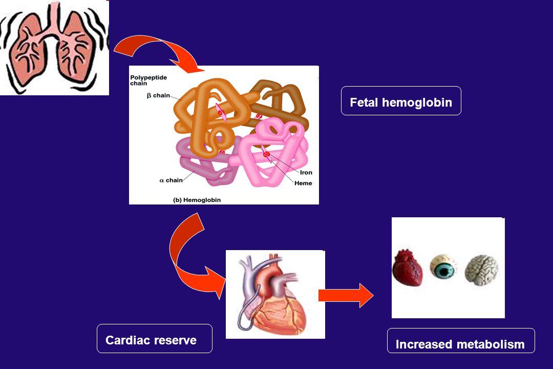 Fetal hemoglobin Cardiac reserve Increased metabolism