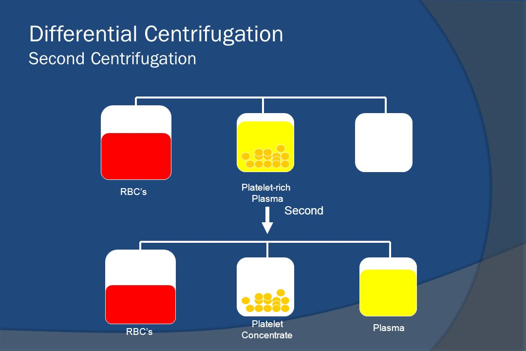 Differential Centrifugation Second Centrifugation Platelet-rich Plasma RBC's Platelet Concentrate RBC's Plasma Second