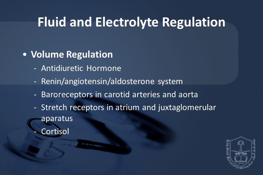 Fluid and Electrolyte Regulation Volume Regulation -Antidiuretic Hormone -Renin/angiotensin/aldosterone system -Baroreceptors in carotid arteries and aorta -Stretch receptors in atrium and juxtaglomerular aparatus -Cortisol