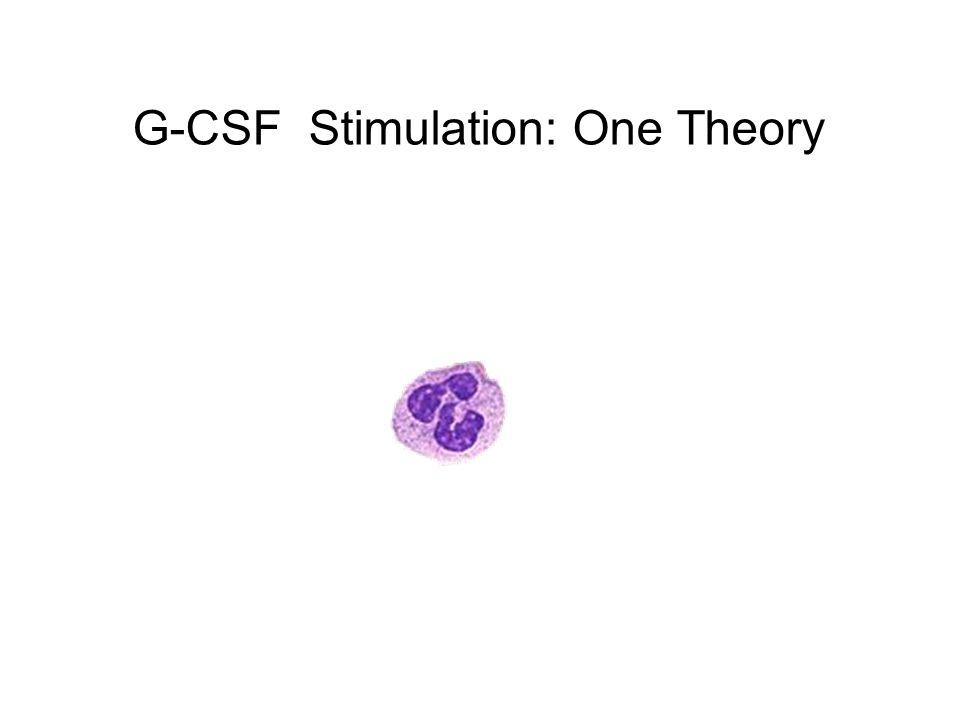 G-CSF Stimulation: One Theory