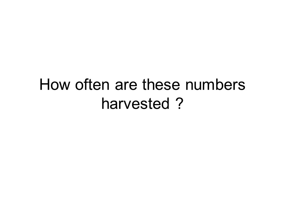 How often are these numbers harvested