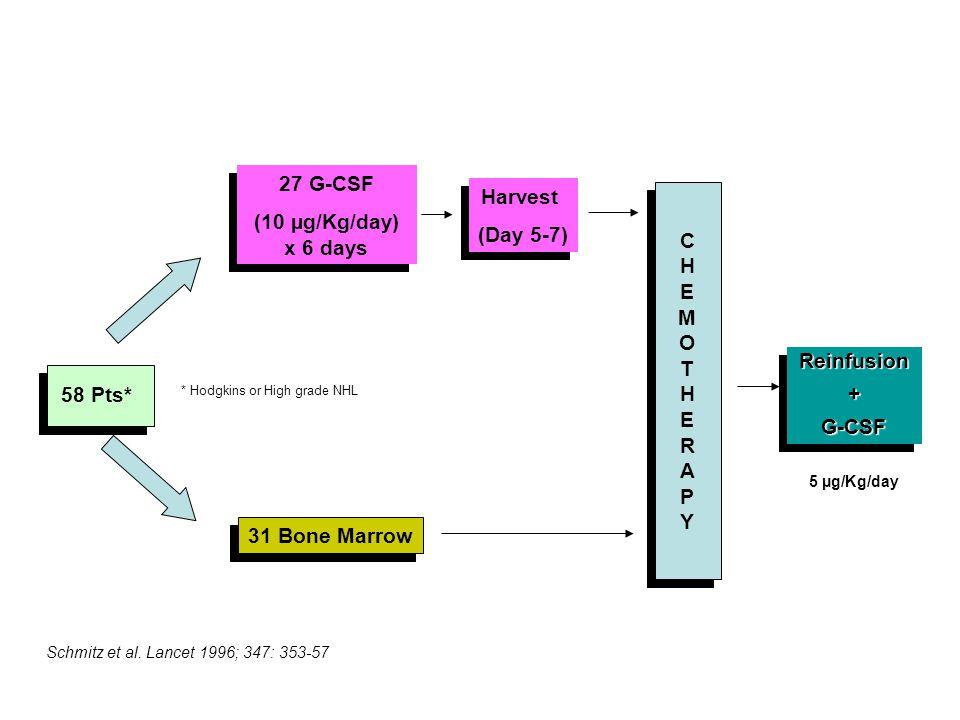 58 Pts* * Hodgkins or High grade NHL 27 G-CSF (10 µg/Kg/day) x 6 days 27 G-CSF (10 µg/Kg/day) x 6 days 31 Bone Marrow CHEMOTHERAPYCHEMOTHERAPY CHEMOTHERAPYCHEMOTHERAPY Harvest (Day 5-7) Harvest (Day 5-7) Reinfusion+G-CSFReinfusion+G-CSF 5 µg/Kg/day Schmitz et al.