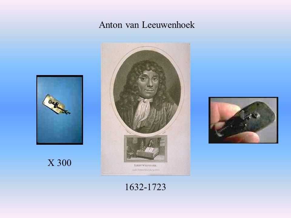 X 300 1632-1723 Anton van Leeuwenhoek