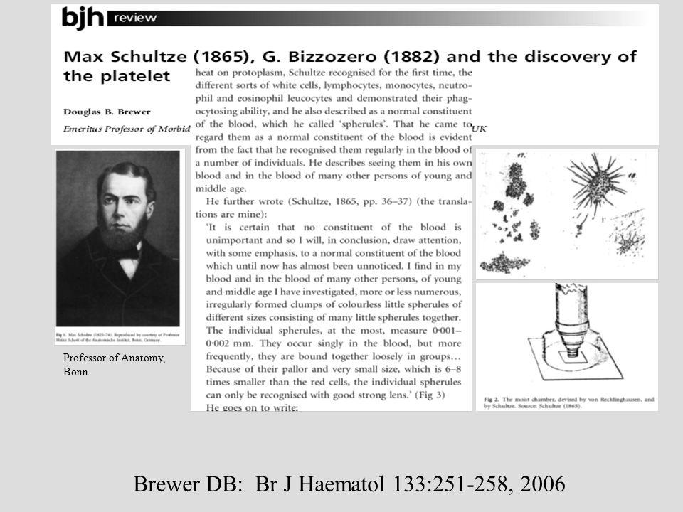 Brewer DB: Br J Haematol 133:251-258, 2006 Professor of Anatomy, Bonn