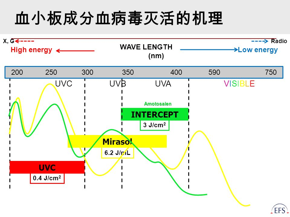 WAVE LENGTH (nm) INTERCEPT High energy Low energy UVC UVB UVA VISIBLE UVC Mirasol 3 J/cm 2 6.2 J/mL 0.4 J/cm 2 RadioX, G Amotosalen 200 250 300 350 400 590 750 血小板成分血病毒灭活的机理