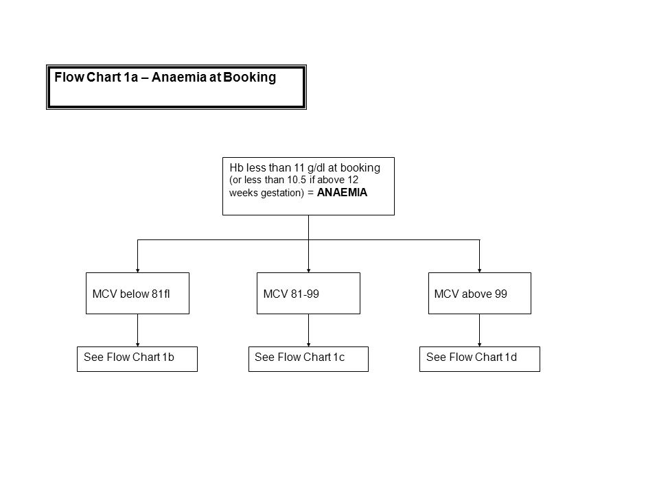 Hb less than 11 g/dl at booking (or less than 10.5 if above 12 weeks gestation) = ANAEMIA MCV below 81flMCV above 99MCV 81-99 Flow Chart 1a – Anaemia