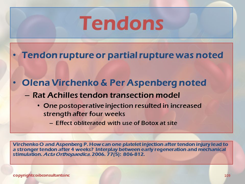 Tendons Tendon rupture or partial rupture was noted Olena Virchenko & Per Aspenberg noted – Rat Achilles tendon transection model One postoperative in