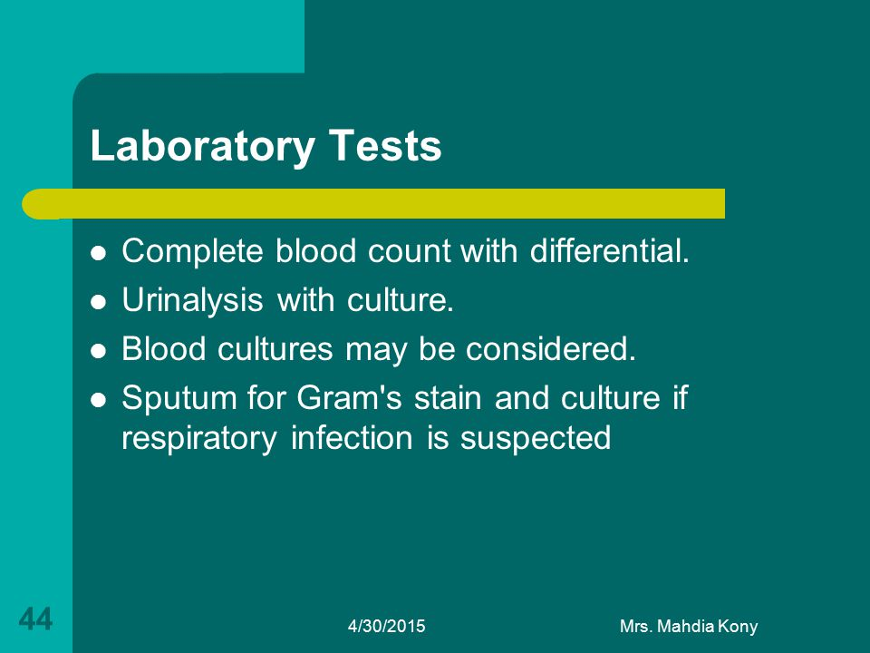 Laboratory Tests Complete blood count with differential. Urinalysis with culture. Blood cultures may be considered. Sputum for Gram's stain and cultur