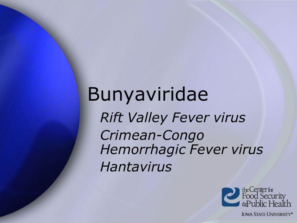 Bunyaviridae Rift Valley Fever virus Crimean-Congo Hemorrhagic Fever virus Hantavirus