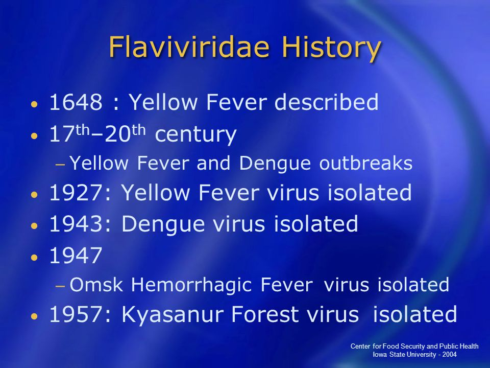 Center for Food Security and Public Health Iowa State University - 2004 Flaviviridae History 1648 : Yellow Fever described 17 th –20 th century − Yellow Fever and Dengue outbreaks 1927: Yellow Fever virus isolated 1943: Dengue virus isolated 1947 − Omsk Hemorrhagic Fever virus isolated 1957: Kyasanur Forest virus isolated