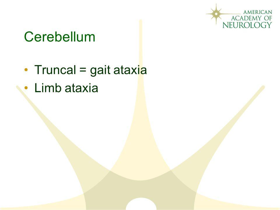 Cerebellum Truncal = gait ataxia Limb ataxia