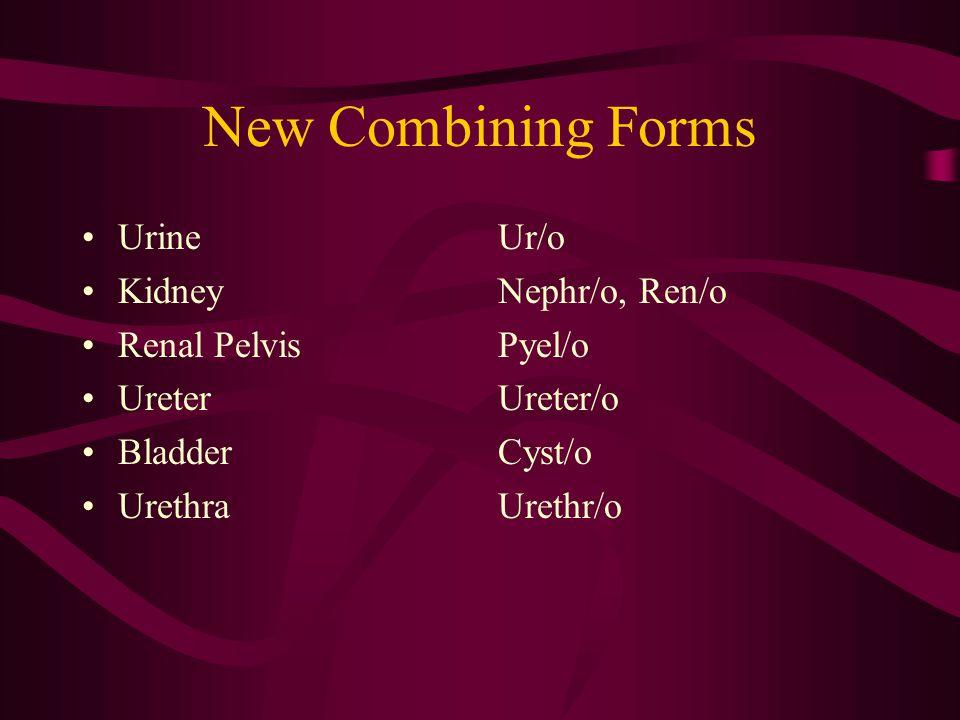 New Suffix -lith -lysis -pexy -ptosis -rrhagia -rrhaphy -uria Stone Destruction Surgical Fixation Prolapse Hemorrhage Suturing or stitching Urine, Urination