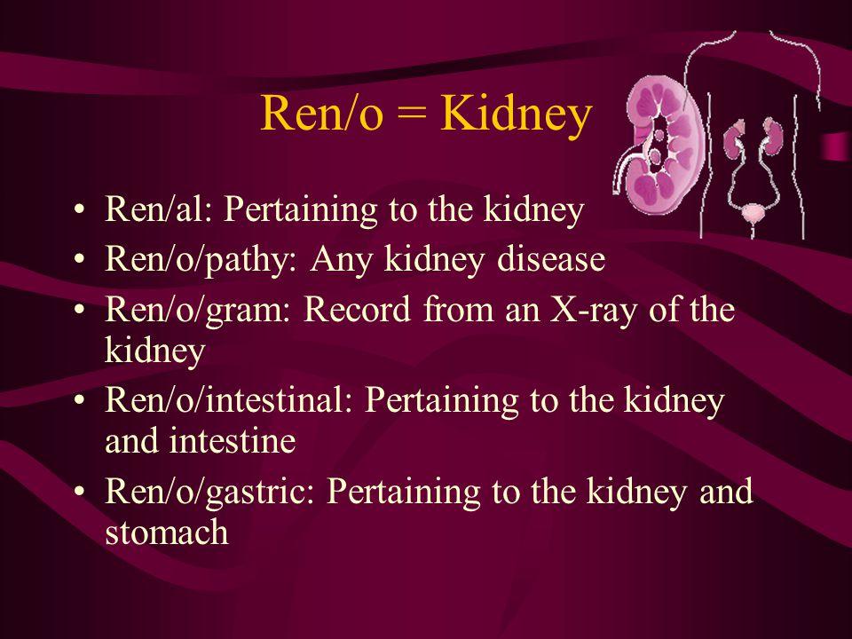Oophor/o = Ovary (egg bearing) Oon = egg  o/o Phoros = bear  phor/o Oophor/ectomy: Excision of the ovary Oophor/itis: Inflammation of an ovary Oophor/oma: Tumor of an ovary Oophor/o/pexy: Fixation of a displaced ovary