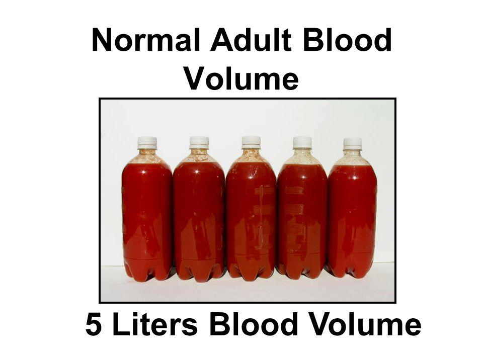 Normal Adult Blood Volume 5 Liters Blood Volume