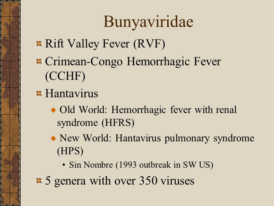 Bunyaviridae Rift Valley Fever (RVF) Crimean-Congo Hemorrhagic Fever (CCHF) Hantavirus Old World: Hemorrhagic fever with renal syndrome (HFRS) New World: Hantavirus pulmonary syndrome (HPS) Sin Nombre (1993 outbreak in SW US) 5 genera with over 350 viruses