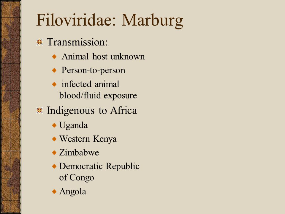 Filoviridae: Marburg Transmission: Animal host unknown Person-to-person infected animal blood/fluid exposure Indigenous to Africa Uganda Western Kenya Zimbabwe Democratic Republic of Congo Angola