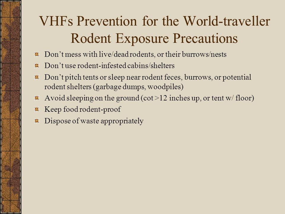VHFs Prevention for the World-traveller Rodent Exposure Precautions Don't mess with live/dead rodents, or their burrows/nests Don't use rodent-infested cabins/shelters Don't pitch tents or sleep near rodent feces, burrows, or potential rodent shelters (garbage dumps, woodpiles) Avoid sleeping on the ground (cot >12 inches up, or tent w/ floor) Keep food rodent-proof Dispose of waste appropriately