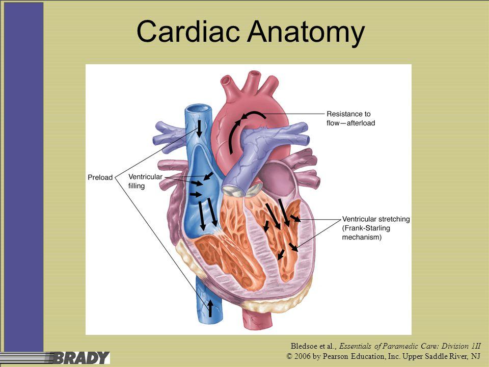 Bledsoe et al., Essentials of Paramedic Care: Division 1II © 2006 by Pearson Education, Inc. Upper Saddle River, NJ Cardiac Anatomy