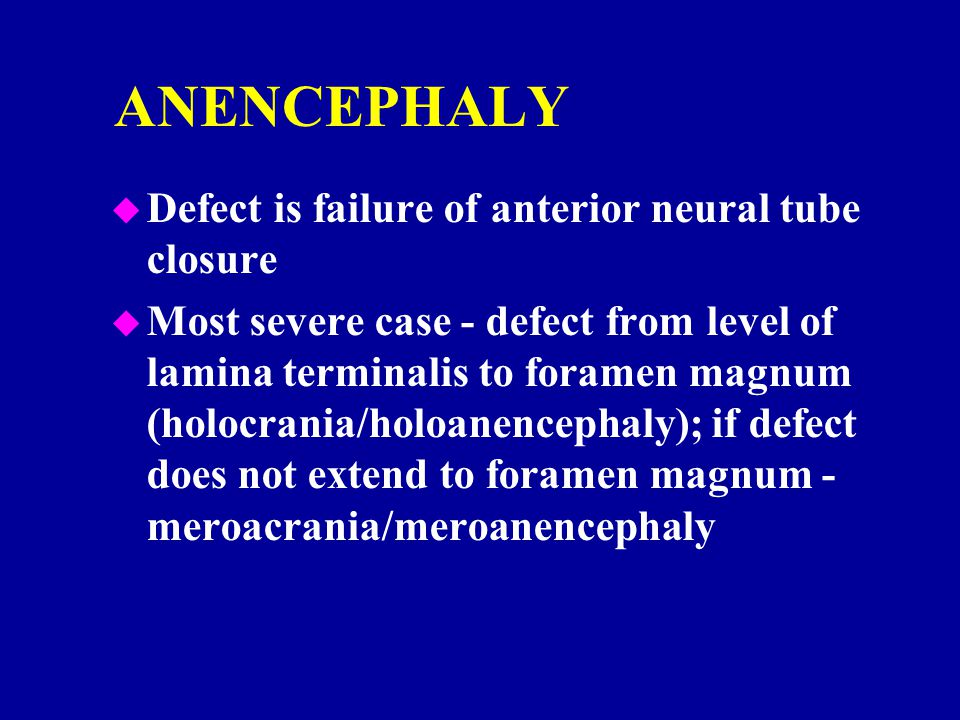 ANENCEPHALY u Defect is failure of anterior neural tube closure u Most severe case - defect from level of lamina terminalis to foramen magnum (holocra