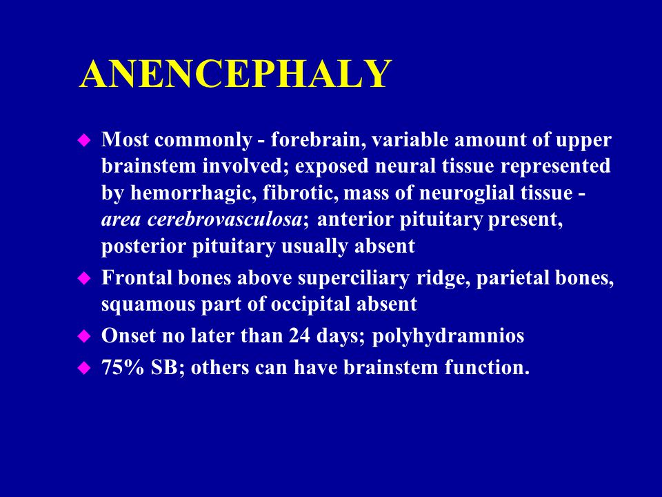 ANENCEPHALY u Most commonly - forebrain, variable amount of upper brainstem involved; exposed neural tissue represented by hemorrhagic, fibrotic, mass