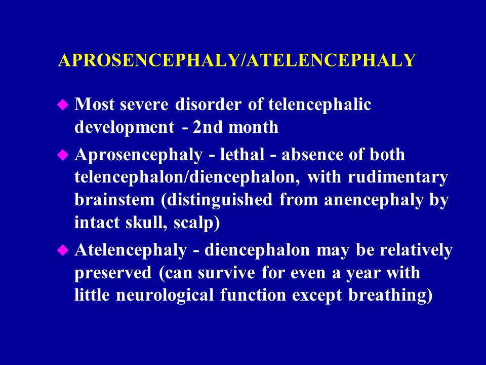 APROSENCEPHALY/ATELENCEPHALY u Most severe disorder of telencephalic development - 2nd month u Aprosencephaly - lethal - absence of both telencephalon