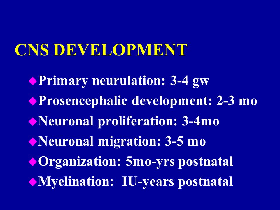 CNS DEVELOPMENT u Primary neurulation: 3-4 gw u Prosencephalic development: 2-3 mo u Neuronal proliferation: 3-4mo u Neuronal migration: 3-5 mo u Orga