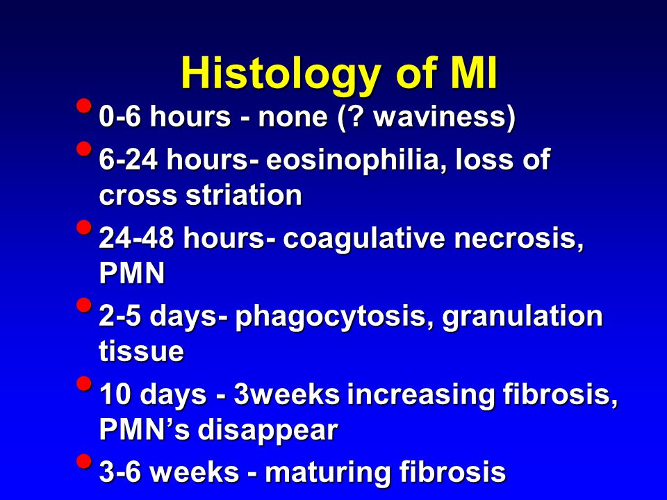 Histology of MI 0-6 hours - none (. waviness) 0-6 hours - none (.