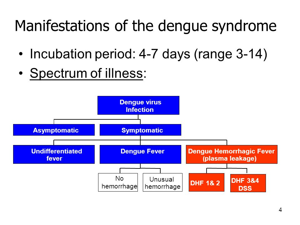 4 Manifestations of the dengue syndrome Incubation period: 4-7 days (range 3-14) Spectrum of illness: Asymptomatic Undifferentiated fever No hemorrhage Unusual hemorrhage Dengue Fever DHF 1& 2 DHF 3&4 DSS Dengue Hemorrhagic Fever ( plasma leakage) Symptomatic Dengue virus Infection