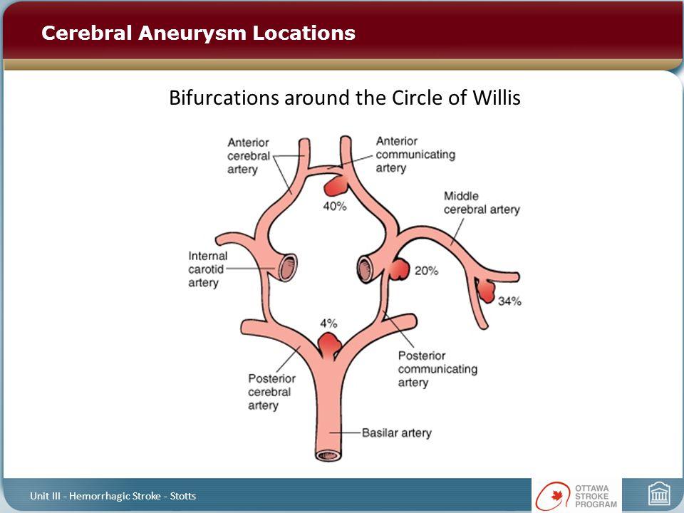 Bifurcations around the Circle of Willis Cerebral Aneurysm Locations Unit III - Hemorrhagic Stroke - Stotts
