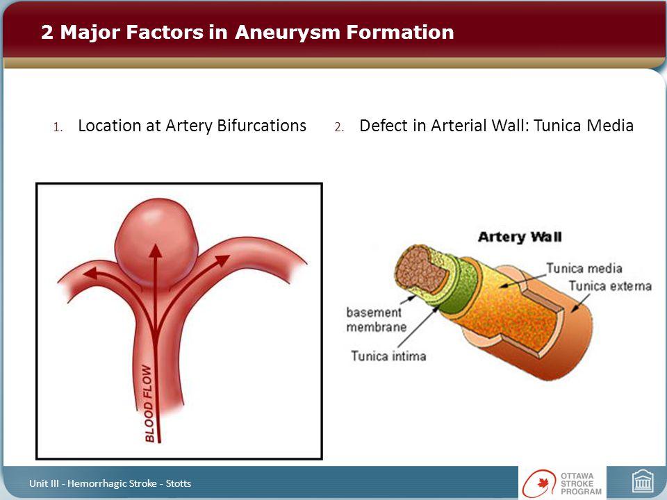 1. Location at Artery Bifurcations 2. Defect in Arterial Wall: Tunica Media 2 Major Factors in Aneurysm Formation Unit III - Hemorrhagic Stroke - Stot