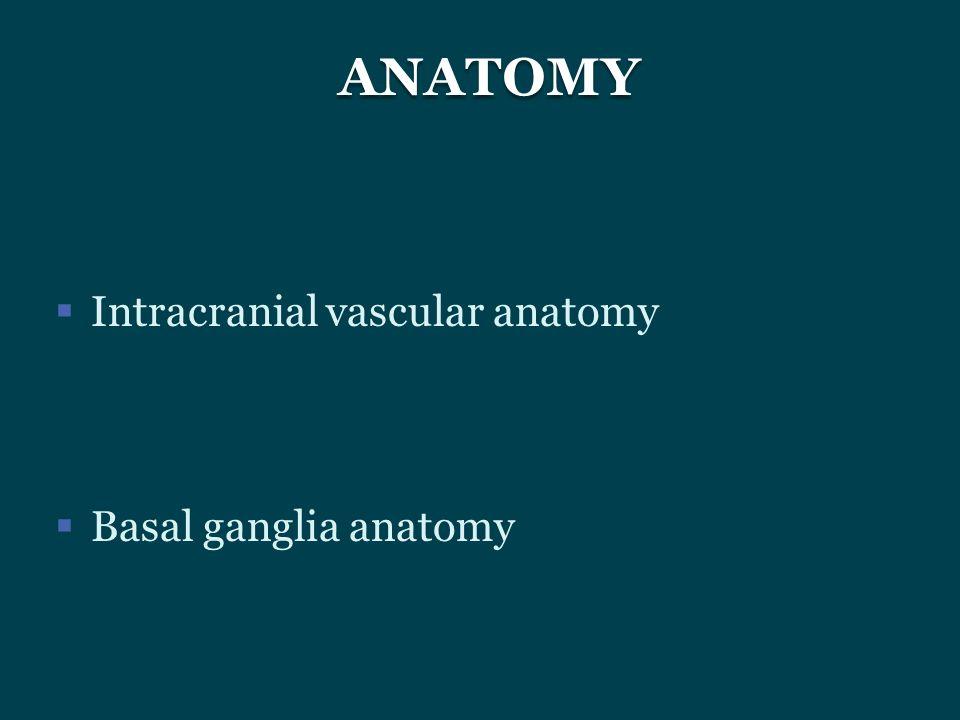  Intracranial vascular anatomy  Basal ganglia anatomy ANATOMY