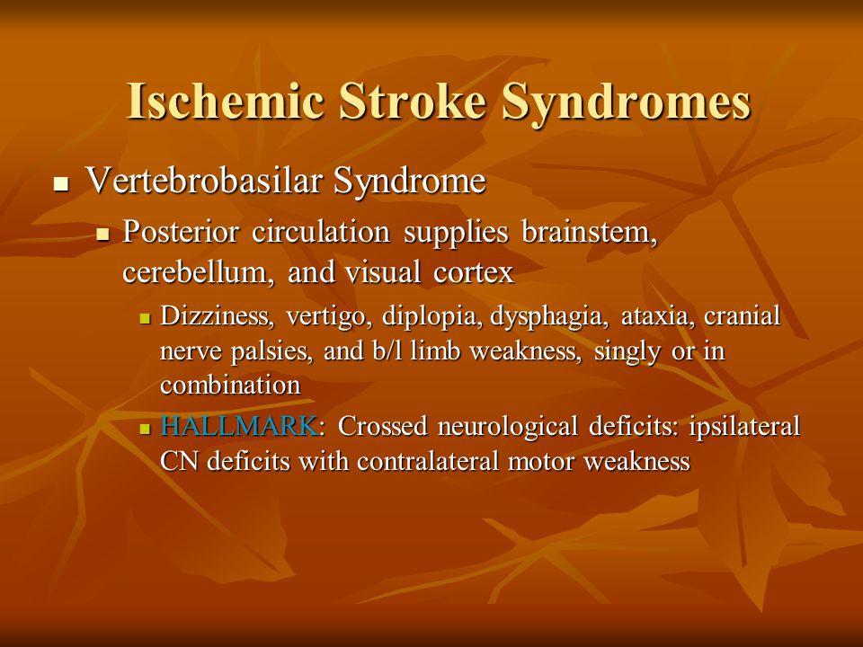 Vertebrobasilar Syndrome Vertebrobasilar Syndrome Posterior circulation supplies brainstem, cerebellum, and visual cortex Posterior circulation suppli