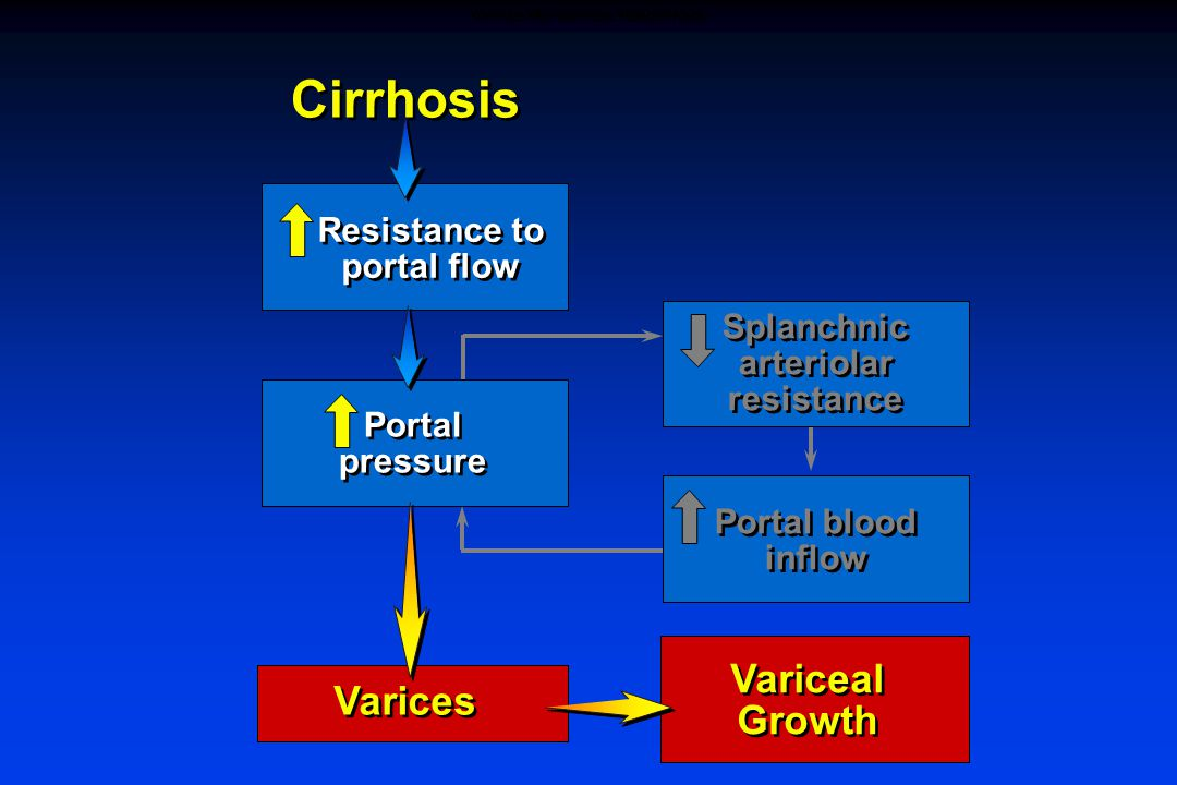 Portal pressure Resistance to portal flow Cirrhosis Splanchnic arteriolar resistance Portal blood inflow Varices Variceal Growth VARICES AND VARICEAL HEMORRHAGE