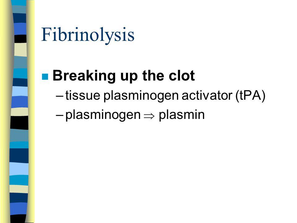 Fibrinolysis n Breaking up the clot –tissue plasminogen activator (tPA) –plasminogen  plasmin