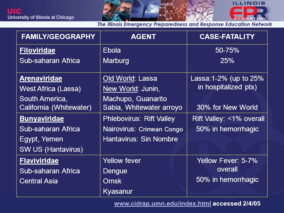 Viral Hemorrhagic Fevers Epidemiology Incubation period –2 days to 3 weeks for most VHF –Lassa fever: 21 days Endemic regions –Sub-saharan Africa Lassa fever causes 100-300,000 infections and 5,000 deaths each year 20 imported cases reported worldwide Human to human transmission has occured –South America