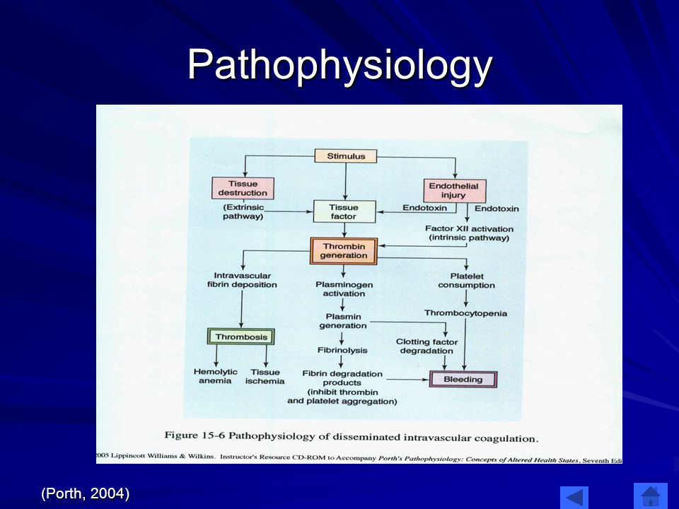 Pathophysiology (Porth, 2004)