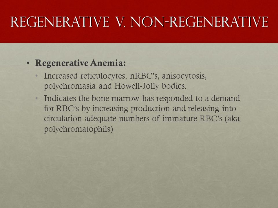 Regenerative v. non-regenerative Regenerative Anemia: Increased reticulocytes, nRBC's, anisocytosis, polychromasia and Howell-Jolly bodies. Indicates