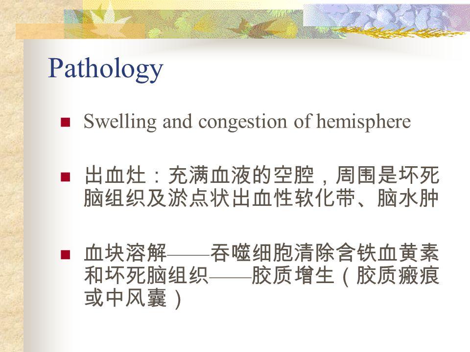 Pathology Swelling and congestion of hemisphere 出血灶:充满血液的空腔,周围是坏死 脑组织及淤点状出血性软化带、脑水肿 血块溶解 —— 吞噬细胞清除含铁血黄素 和坏死脑组织 —— 胶质增生(胶质瘢痕 或中风囊)
