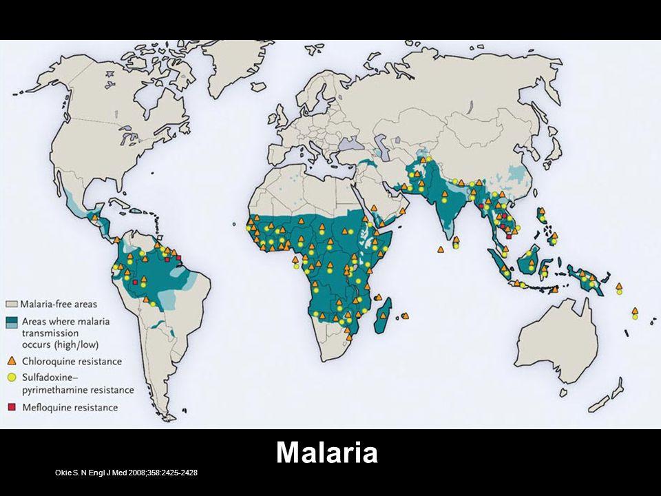 Okie S. N Engl J Med 2008;358:2425-2428 Malaria