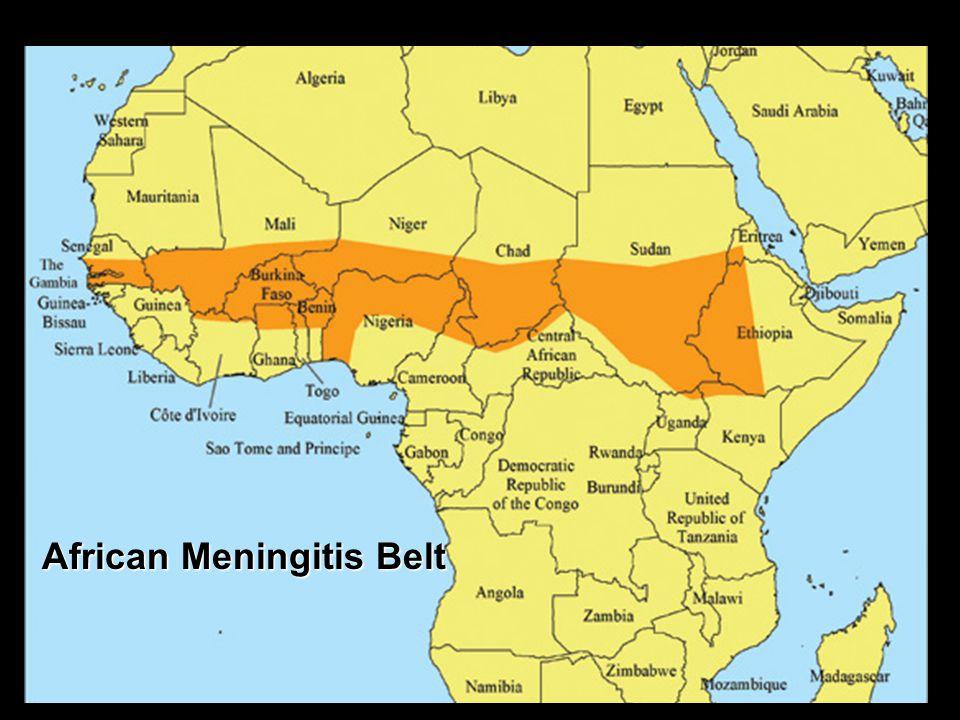 African Meningitis Belt