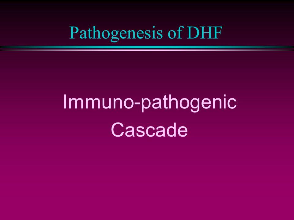 Pathogenesis of DHF Immuno-pathogenic Cascade