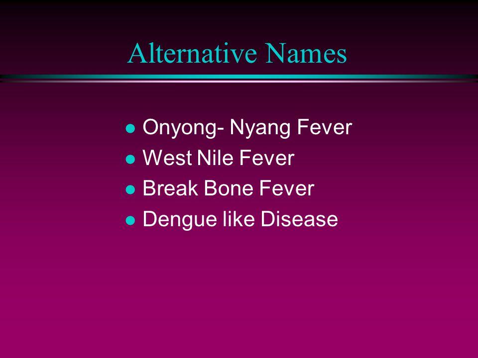 Alternative Names l Onyong- Nyang Fever l West Nile Fever l Break Bone Fever l Dengue like Disease