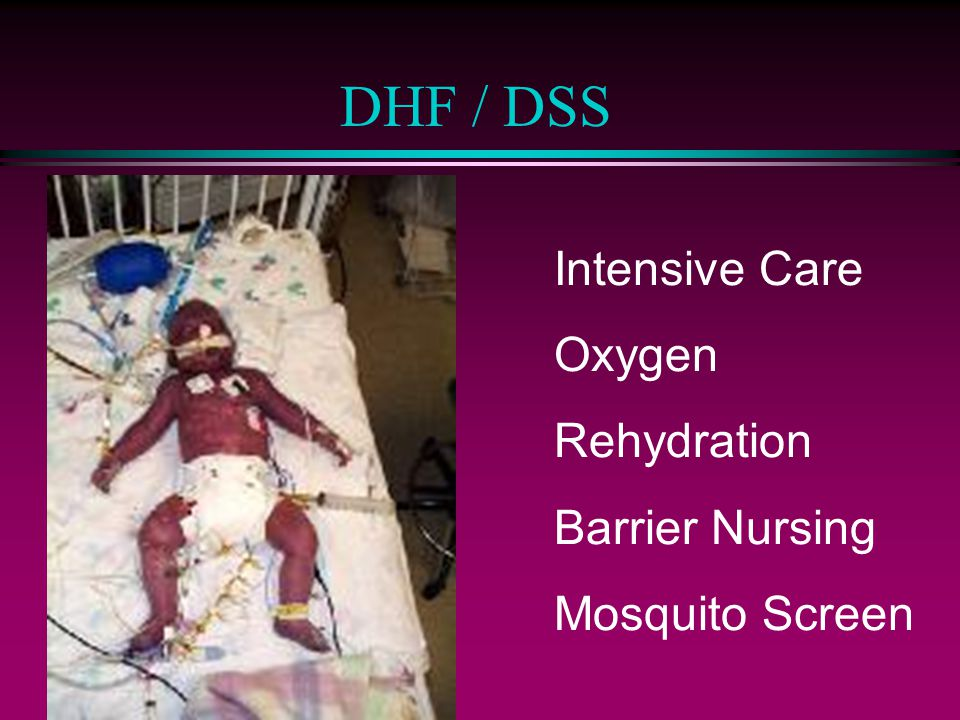 DHF / DSS Intensive Care Oxygen Rehydration Barrier Nursing Mosquito Screen