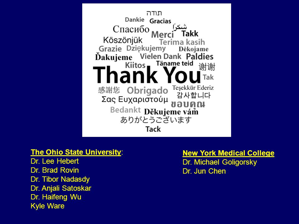 The Ohio State University: Dr. Lee Hebert Dr. Brad Rovin Dr.